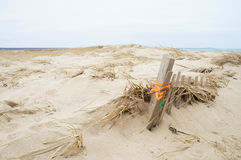 Houten die strandomheining in zand wordt begraven Royalty-vrije Stock Foto's