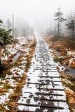 Houten die weg door naaldbomen wordt omringd in smeltende sneeuw in bergen op een nevelige de winterdag worden behandeld De voets royalty-vrije stock afbeeldingen