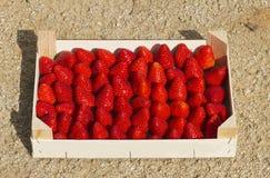 Houten doos met aardbeien Stock Fotografie