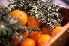 Houten doos met mandarijnen royalty-vrije stock afbeeldingen