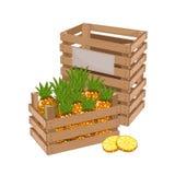 Houten dooshoogtepunt van ananasvector Stock Foto's