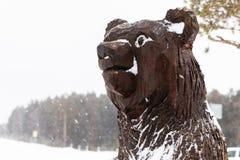 Houten draag in de winter Houten draag hoofd dichte omhooggaand in sneeuwval royalty-vrije stock foto