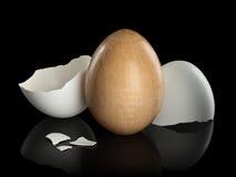 Houten ei in natuurlijke shell Royalty-vrije Stock Foto