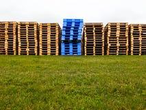Houten en plastic pallets Stock Fotografie