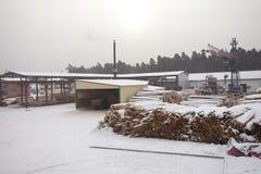 Houten Fabriek royalty-vrije stock foto's