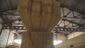 Houten Fabrieks algemeen plan: de productie van gelamineerd vernisjetimmerhout stock videobeelden
