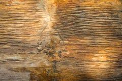 Houten fossielentextuur met glanzende en marmeren texturen met bruine kleur en barst rond - foto stock fotografie