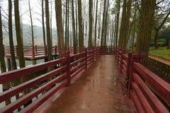 houten gang in botanische tuin Stock Foto