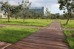 houten gangen in het Park Een groen gazon en een het groeien struik stock fotografie