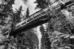 Houten gangmanier over een weg in het bos stock fotografie