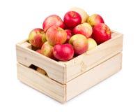 Houten geïsoleerd dooshoogtepunt van verse appelen royalty-vrije stock fotografie