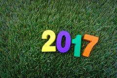 Houten geel, violet, groen en oranje op groen gras Royalty-vrije Stock Foto