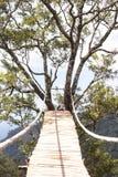 Houten gevaarlijke kabelbrug Stock Foto's