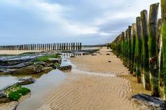 Houten golfbreker ons strand van Wissant, kooi opale, Frankrijk Royalty-vrije Stock Afbeeldingen