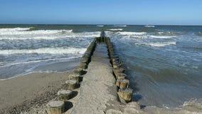 Houten golfbreker op Oostzeestrand van Wustrow en Ahrenshoop stock footage