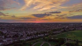 Houten groene zonsondergang royalty-vrije stock afbeelding