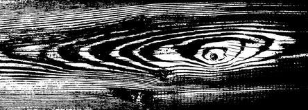 Houten grungetextuur Natuurlijke houten geïsoleerde achtergrond Vector illustratie Stock Foto's