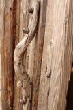 Houten handvat op de deur Stock Afbeelding