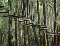 Houten hangende ladder royalty-vrije stock foto