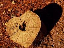 Houten hart Stock Afbeeldingen