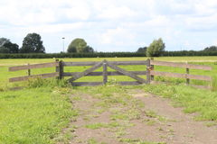 Wooden fence. Closed meadow with a wooden fence Stock Images