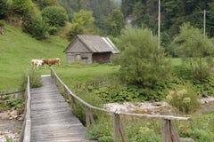 Houten hut en brug, Apuseni-Bergen, Roemenië royalty-vrije stock afbeelding