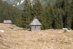 Houten hutten in Chocholowska-vallei in de lente, Tatra-Bergen, stock afbeelding