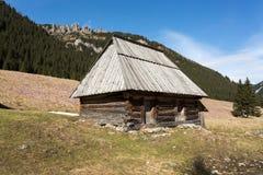 Houten hutten in Chocholowska-vallei in de lente, Tatra-Bergen stock foto