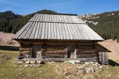 Houten hutten in Chocholowska-vallei in de lente, Tatra-Bergen, stock foto