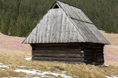 Houten hutten in Chocholowska-vallei in de lente, Tatra-Bergen, Polen stock afbeeldingen