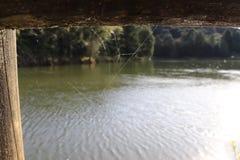 Houten kader van een meer en een spiderweb stock foto's