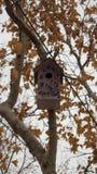 Houten kleurrijk vogelhuis Stock Afbeeldingen