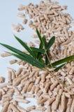 Houten korrels voor het verwarmen en groene bladeren Royalty-vrije Stock Afbeeldingen