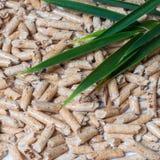 Houten korrels voor het verwarmen en groene bladeren Royalty-vrije Stock Afbeelding