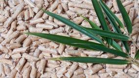 Houten korrels voor het verwarmen en groene bladeren Stock Fotografie