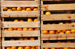 Houten krattenhoogtepunt van sinaasappelen Royalty-vrije Stock Foto