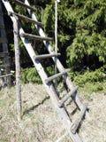 Houten ladder in aard dichtbij jagersplaats, Litouwen stock afbeelding