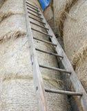 Houten ladder in de schuur royalty-vrije stock afbeeldingen