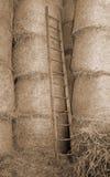 houten ladder in de schuur van het landbouwbedrijf royalty-vrije stock afbeeldingen