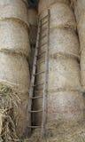 houten ladder in de schuur van het landbouwbedrijf royalty-vrije stock afbeelding