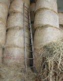 houten ladder in de schuur van het landbouwbedrijf stock foto