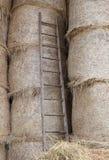 houten ladder in de schuur van het landbouwbedrijf stock afbeelding