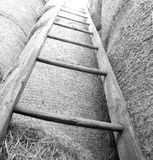 houten ladder in de schuur van het landbouwbedrijf royalty-vrije stock foto