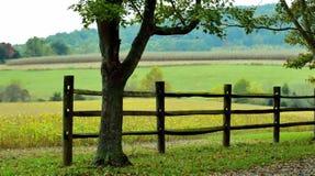 Houten Landbouwbedrijfomheining Royalty-vrije Stock Afbeelding