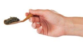 Houten lepel met groene thee in vrouwelijke hand Stock Afbeeldingen