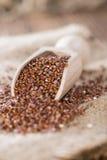Houten lepel met rode Quinoa Stock Foto