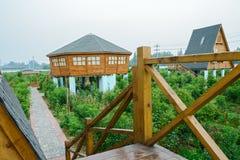 Houten leuning van cabine in boomgaard Royalty-vrije Stock Foto