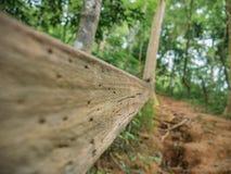 Houten leuningen op de manier tot de bovenkant van de berg van Khao Luang in het Nationale Park van Ramkhamhaeng royalty-vrije stock foto