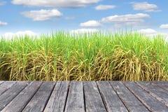 Houten lijst aangaande Prepare Suikerrietgebied stock fotografie