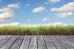 Houten lijst aangaande Prepare Suikerrietgebied royalty-vrije stock afbeeldingen